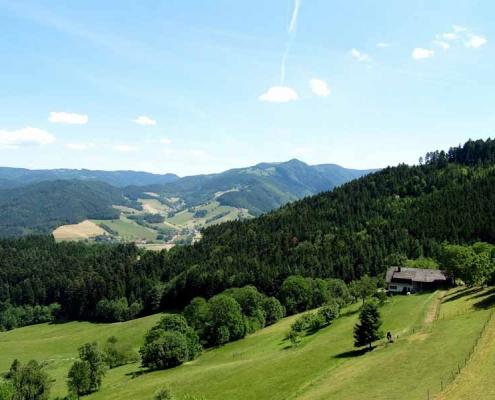 Erleben Sie wunderschöne Wanderwege mit tollem Ausblick im Schwarzwald