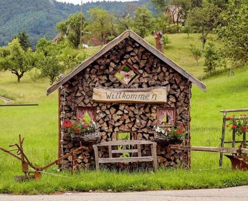 Der Schwarzwald ist ein wahres Naturparadies zwischen Rhein- und Neckartal und lädt zu zahlreichen Ausflugszielen ein